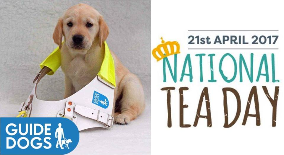 Guide Dogs For The Blind Uk Jobs