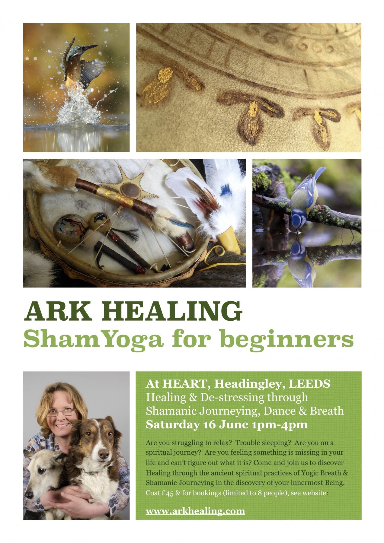 ARK HEALING - ShamYoga for Beginners - Heart Centre
